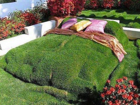 cama de grama