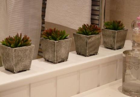 plantas_2
