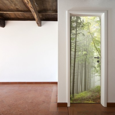 fotomurales-para-puertas-fp070
