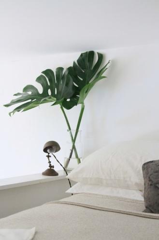 erin-boyle-apartment